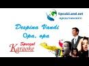 Английский по песням&караоке Despina Vandi Оpa, opa
