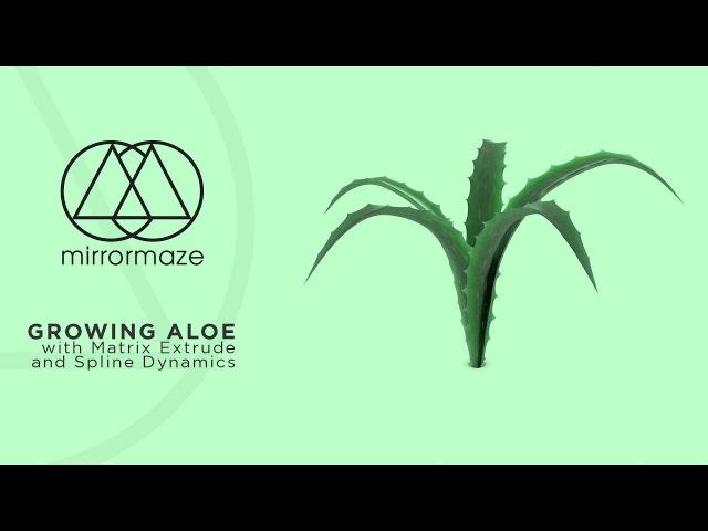 Grow a Dynamic Plant in Cinema 4D