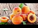 Масло абрикосовых косточекСвойства и применениеМыловарение
