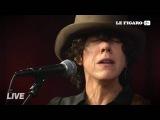 LP (Laura Pergolizzi) -