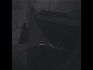 artem_dogma video