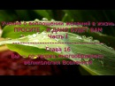 Учение о воплощении желаний в жизнь. Часть I. Глава 16  Вы — со-творец многообразно...