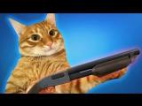 Мой кот СНОВА пытается меня убить! ׃O