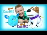 CacaMAX Какающая собака МАКС и ФЕРБИ Коннект Видео для детей Играем Смешное видео