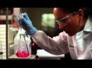 4 этапа качества продукции NSP