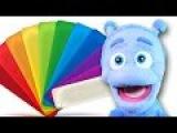Nauka kolor