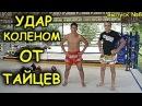 Удар коленом в прыжке и т д Тайский бокс Техника обучение от Тайцев