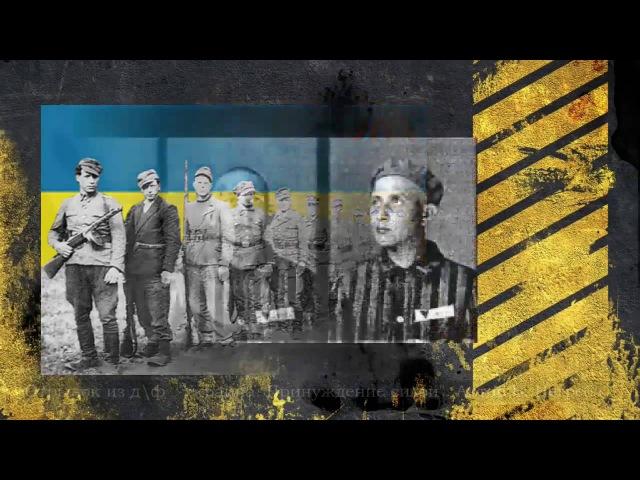 Бандеризация Продолжение спецоперации НКВД