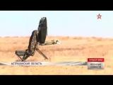 Ракетчики показали боевые возможности комплекса «Искандер-М»