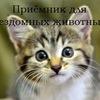 """Приемник для животных """"Подари жизнь"""" г. Саров"""