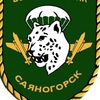 "Военный спортивно-технический клуб ""Десантник"""