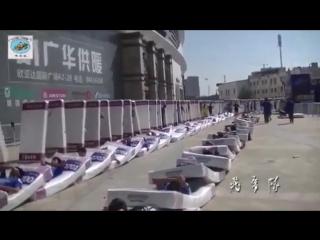 Мировои рекорд_ _эффект домино_ из людеи