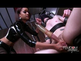 Госпожа доит раба