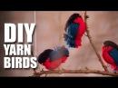 DIY Fun Wooly Birds Room Decor DIY Mad Stuff With Rob