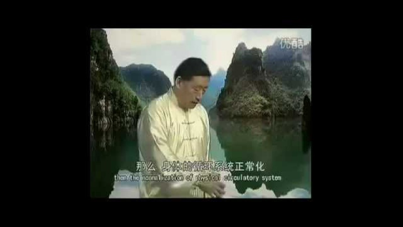 Chen Shi Taijiquan Jibengong