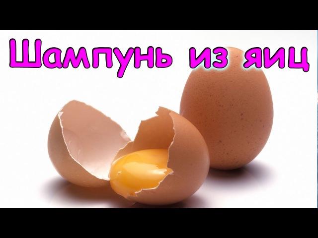 Семья Бровченко. Шампунь из яиц своими руками кондиционер. (04.17г.)