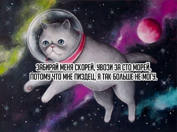 https://pp.vk.me/c636423/v636423233/2b11/bHU5tyixu_c.jpg