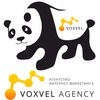 Разработка, продвижение сайтов в Минске | Voxvel