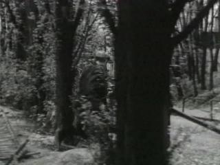 Адъютант его превосходительства (мини-сериал) (1969). 4ч.