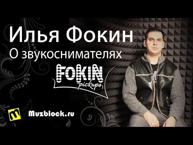Фокин Илья - О звукоснимателях