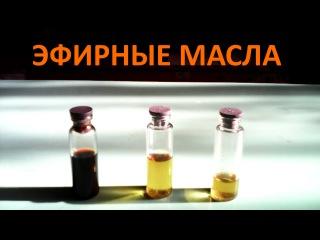 как получить эфирное масло в домашних условиях rfr gjkexbnm 'abhyjt vfckj d ljvfiyb[ eckjdbz[