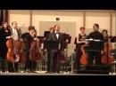 8 виолончелей и 1 губная гармошка (8 cellos 1 harp)