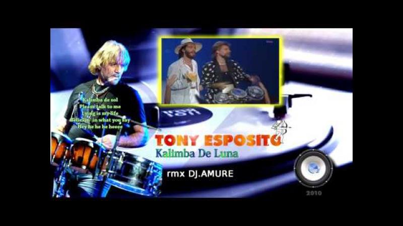 Tony Esposito-Kalimba De Luna (rmx DJ.Amure)
