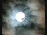 James Holden - I Have Put Out The Light (Original Mix)