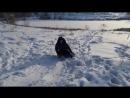 Зима! Бежишь с горы кататься Наперекор судьбе И кажется , что минус 20 Тебе