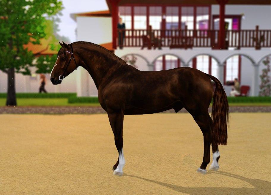 Регистрация лошадей в RHF 2 - Страница 3 NsGlrqwq11k