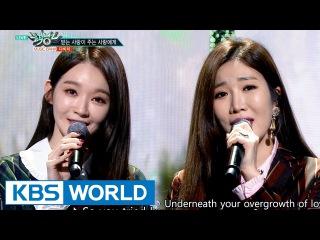 DAVICHI - Love is  [Music Bank / 2016.11.04]