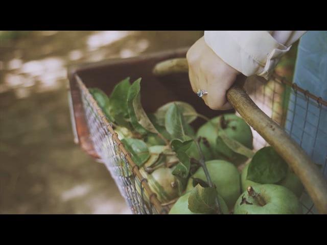 Eva Kosmas Flores - Upstate New York Apple Pie