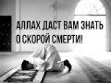 Аллах даст вам знать о скорой смерти! Эмоционально!  Шейх Хасан Али
