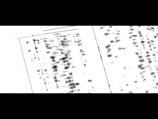 SAIKO - Monogatari Series