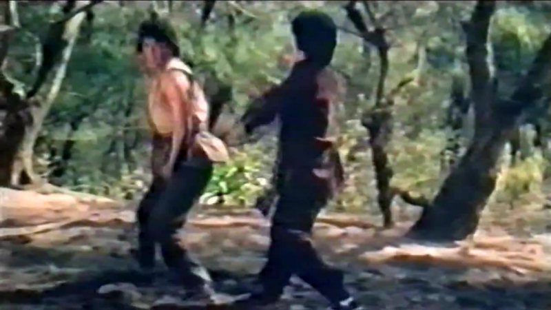Кунг-фу на продажу / Kung-fu on sail / Gong fu da pai mai 1979