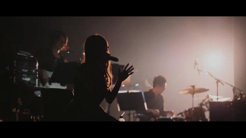 Aimer - Heartache cover ONE OK ROCK (Live Tour DAWN)