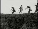 Isadora Duncan - style dancers on the Beach, Miss Margaret Morris Open Air School