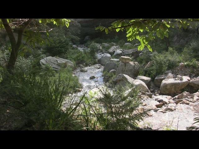 Dal fiume le pietre