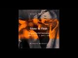Steve Jansen  Richard Barbieri - Stone To Flesh