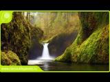 Самогипноз. Зеленый поток.