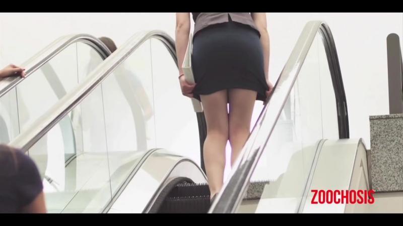 дела обстоят на эскалаторе видео волосы под юбкой разве мог тогда