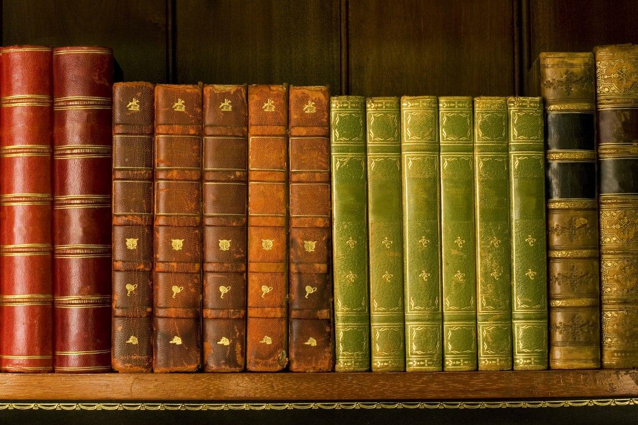 Дети из Южного Медведкова чаще всего читают Каверина и Рыбакова