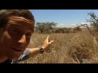 Выжить любой ценой: Африканская саванна. 7 серия 1 сезон