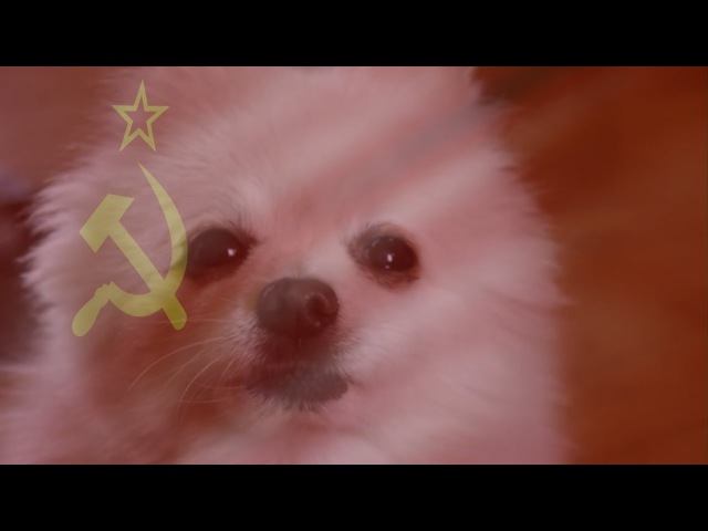 Gabe the Dog - Soviet Barks (CC Red Alert)