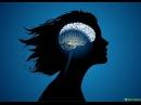 Психологическая установка на похудение 2 Евгений Кох