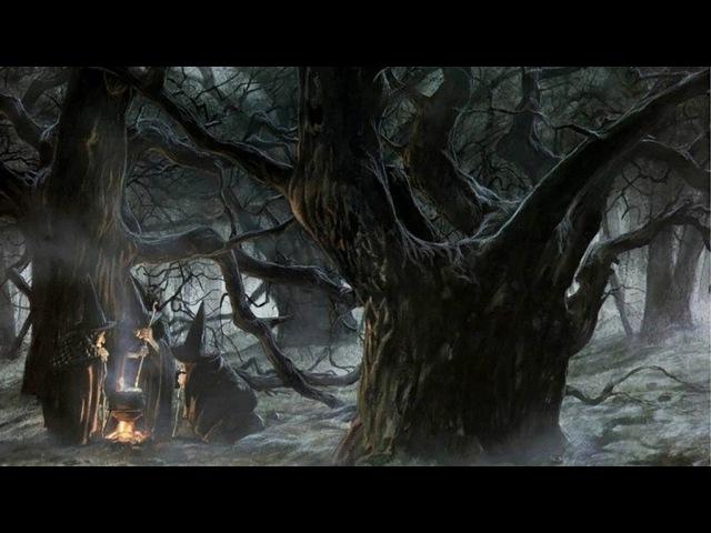 Добрая ночь с ведьмой: ритуалы на Славу