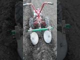 Окучивание картофеля мотоблоком Мотор Сич