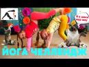 Йога Челлендж Вызов Yoga Challenge 4К