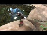 Павильон для мелких приматов и пингвинов в Новосибирском зоопарке