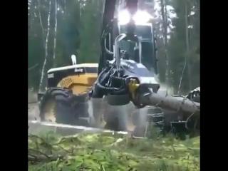 Лесоруб 21 века